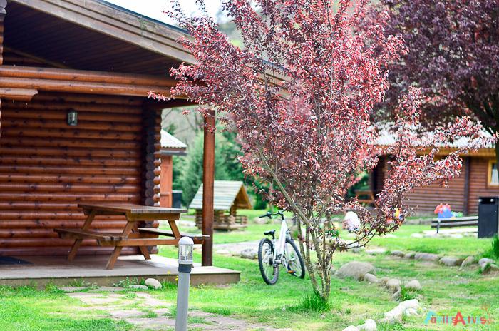 Camping para familias La Vall de Camprodon-Familias Activas-2