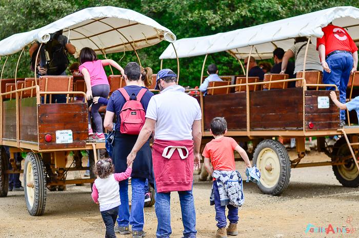 Camping para familias La Vall de Camprodon-Familias Activas-34