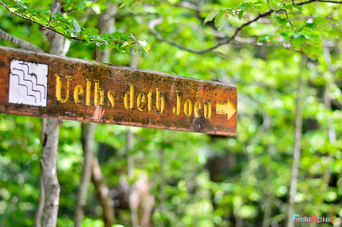 Camping-Verneda-Destino-turismo-familiar-val-daran-Familias-activas-34