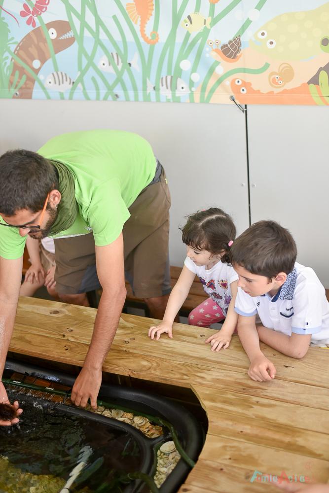colonias-de-verano-de-la-fundacion-pere-tarres-FamiliasActivas-15