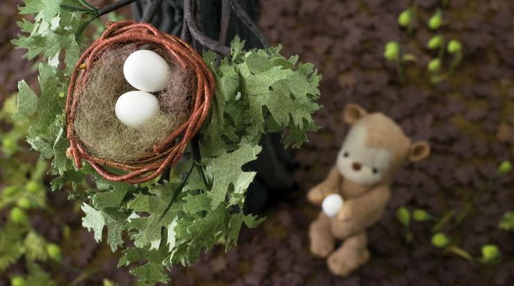 Lucas hará todo lo posible para devolver el pequeño huevo a su nido