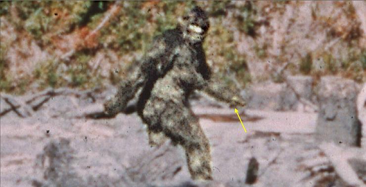 La filmación de Patterson y Gimlin realizada en 1967 es la prueba más famosa de la existencia del Bigfoot.