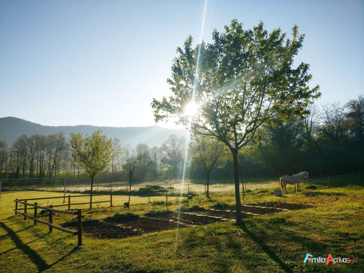 vivimos-la-naturaleza-en-familia-en-los-campings-de-montana-7