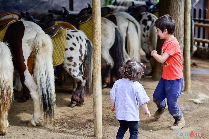 Camping para familias La Vall de Camprodon-Familias Activas-45