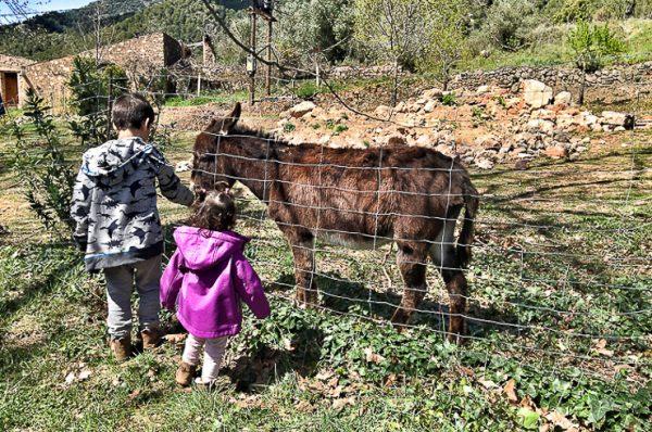 Descubrir las Muntanyes de Prades en familia