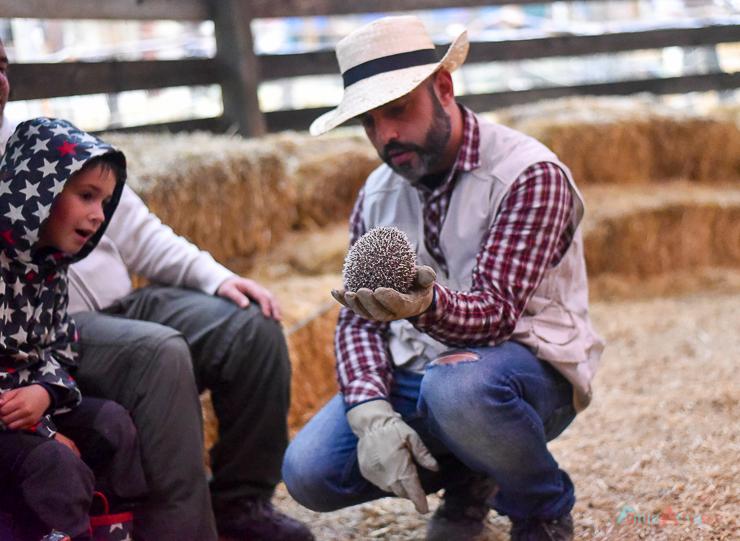 GranjaAventuraPark-granja-animales-planesconninos-salirenfamilia-FamiliasActivas-ociofamiliar-34