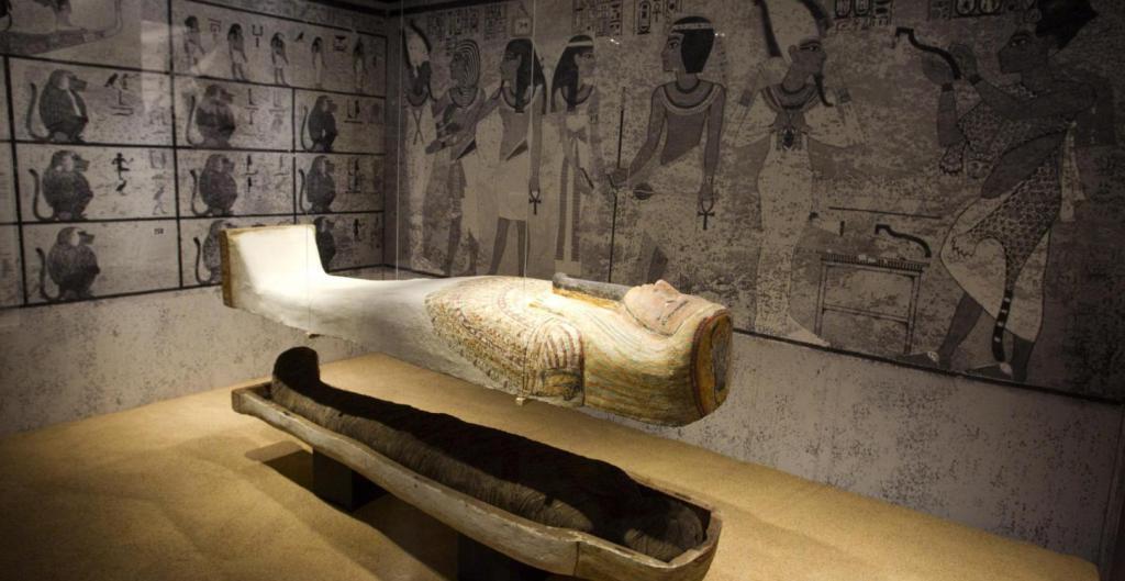 museoegipciobarcelonafamiliasactivas