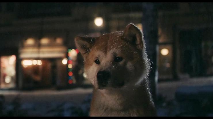 """La fidelidad del amor de los animales-""""Siempre a tu lado (Hachiko)"""""""