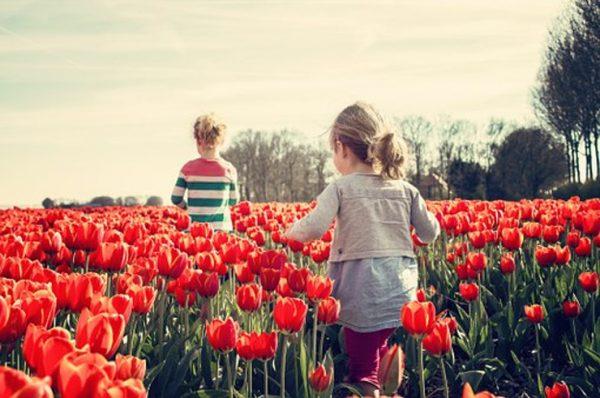 Ecoturismo en familia: una opción diferente para este verano