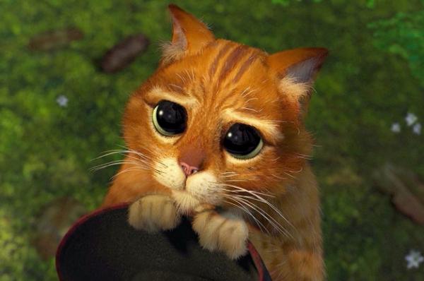 Miau Miau Miau. Los gatos en el cine