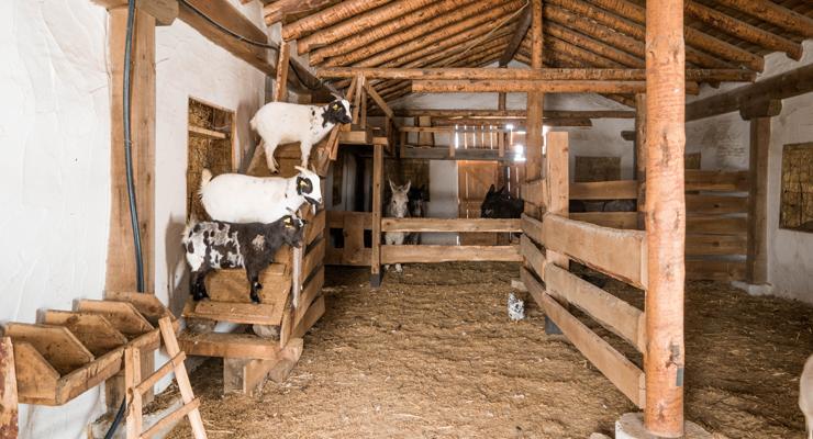 casa rural el enebral