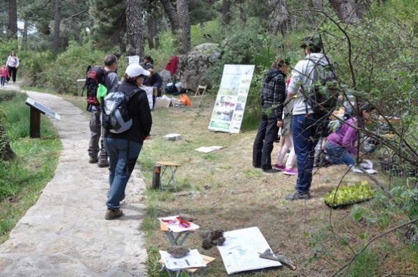 Centro Arboreto Luis Ceballos, actividades en plena naturaleza