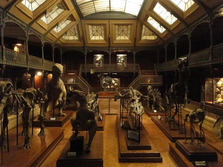 El hall del museo de historia natural es una de las joyas de Dan Ohlmann
