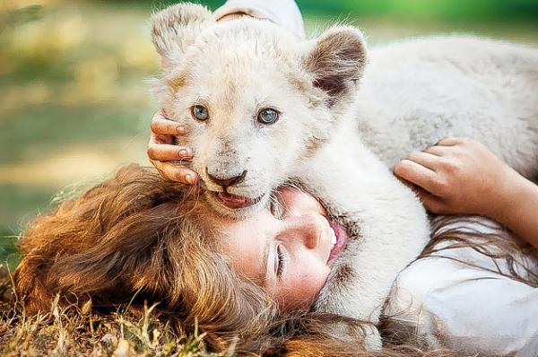"""Hablamos con el director de """"Mia y el león blanco"""""""