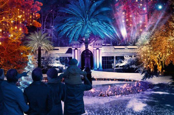 Las luces del Real Jardín Botánico en Navidad